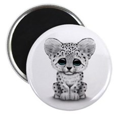 Cute Baby Snow Leopard Cub on White Magnets