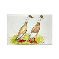 Runner Ducks Rectangle Magnet