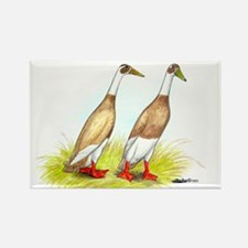 Runner Ducks Rectangle Magnet (10 pack)