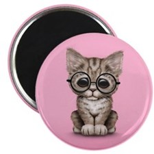 Cute Tabby Kitten with Eye Glasses on Pink Magnets