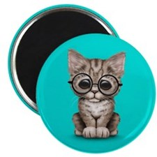 Cute Tabby Kitten with Eye Glasses on Blue Magnets