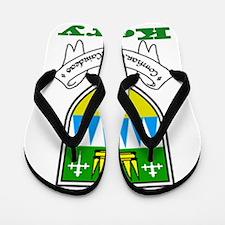 County Kerry COA Flip Flops