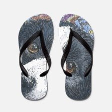 Forget me not Border Collie Flip Flops