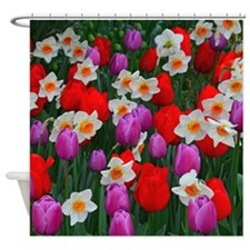 Purple tulips and white daffodils garden Shower Cu