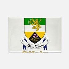 County Offaly Magnets