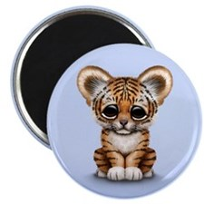 Cute Tiger Cub Baby on Blue Magnets