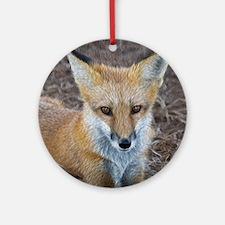 red fox Round Ornament