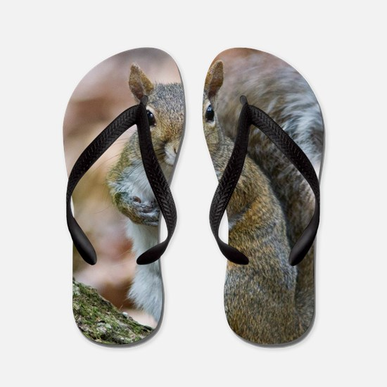 Cute Squirrel Flip Flops