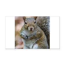 Cute Squirrel Rectangle Car Magnet
