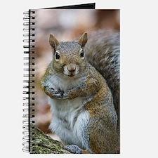 Cute Squirrel Journal