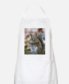 Cute Squirrel Apron