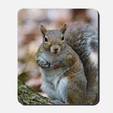Cute Squirrel Mousepad