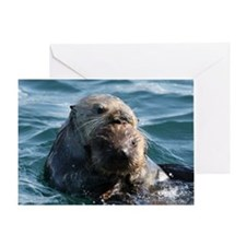 Sea Otters Swimming Greeting Card
