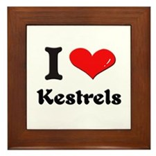 I love kestrels  Framed Tile