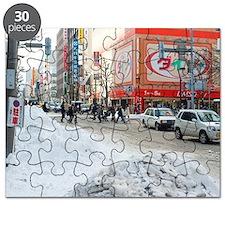 Sapporo in winter Puzzle
