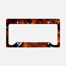 Eyes License Plate Holder
