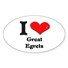 I love great egrets Oval Decal