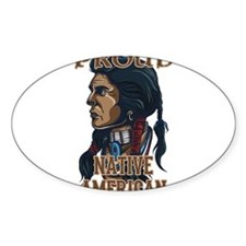 proud native american 3 Decal