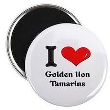 I love golden lion tamarins Magnet