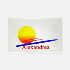 Alexandrea Rectangle Magnet