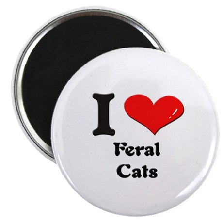 I love feral cats Magnet