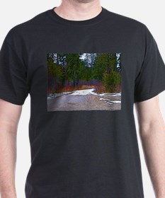 Funny Thunder bay T-Shirt