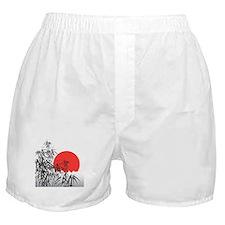 Asian Sunset Boxer Shorts