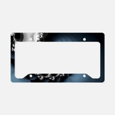 Scoop License Plate Holder