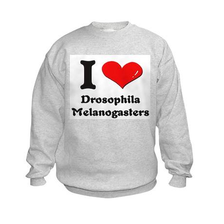 I love drosophila melanogasters Kids Sweatshirt