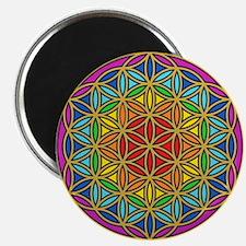 Chakra6 Magnet Magnets