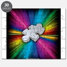 The Puzzle within the Spectrum Puzzle
