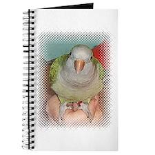 Quaker 2 Journal