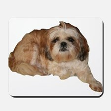 It's all about the Shih Tzu. Mousepad