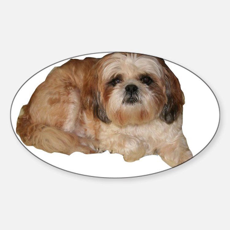 It's all about the Shih Tzu. Oval Decal