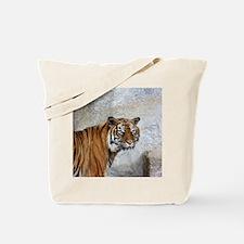 Cool Tiger cat black white kitten graphic smillakatz Tote Bag