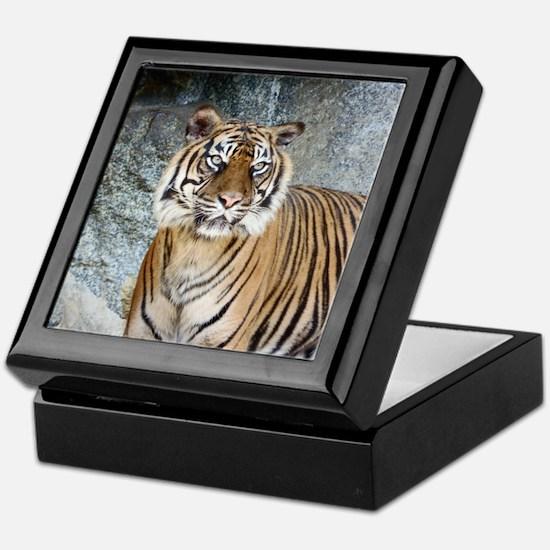 Funny Bengal white tigers Keepsake Box