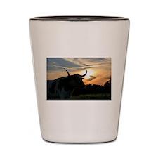Longhorn Sunset Shot Glass