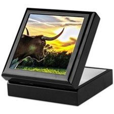 Illuminated Longhorn Sunset Keepsake Box