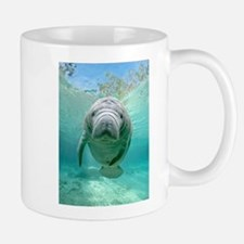Baby Manatee in the Spring Mugs