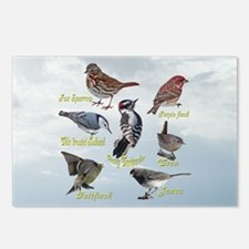 Backyard Birds Postcards (Package of 8)
