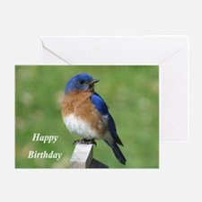 Bluebird Greeting Cards