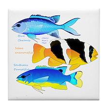 3 Damselfish Tile Coaster