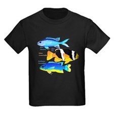 3 Damselfish c T-Shirt