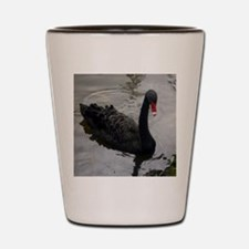 Black Swan Swimming Shot Glass