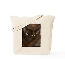 Cute Burmese Tote Bag
