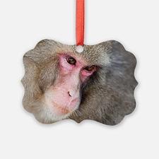 snow monkey face Ornament