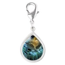Dolphin in the universe Charms