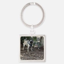 Sid Precious at the Park Square Keychain