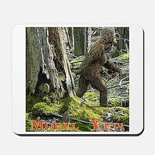 Morel Yeti Big foot gifts Mousepad