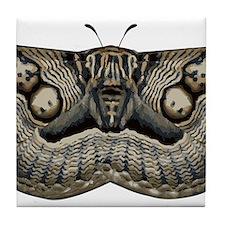 Zebra Moth Tile Coaster